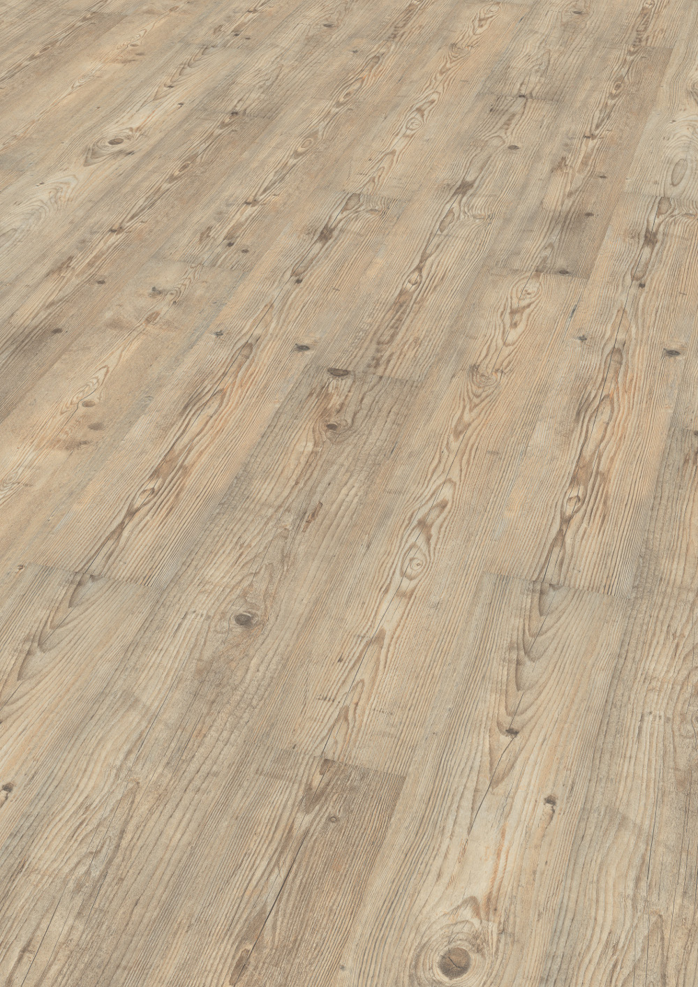 wineo laminat ascona pine nature mit trittschall 1 stab wineo 500 medium. Black Bedroom Furniture Sets. Home Design Ideas