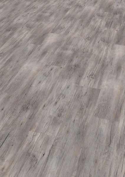 wineo vinyl 5 mm klick riga vibrant pine wineo 800 wood. Black Bedroom Furniture Sets. Home Design Ideas