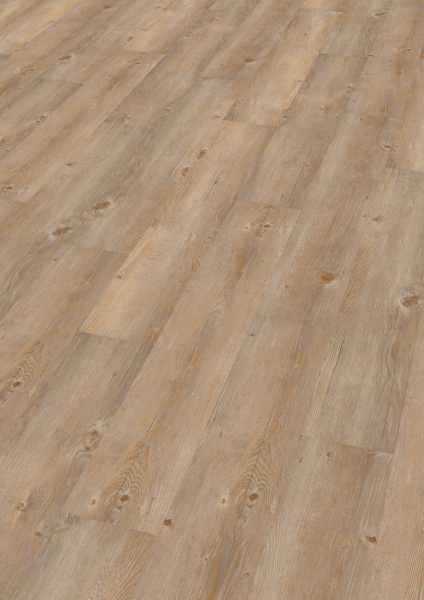 "Wineo Vinyl 2 mm zum kleben ""Toscany Pine"" - WINEO 600 wood - 4 kaufen - Laminatparadies"