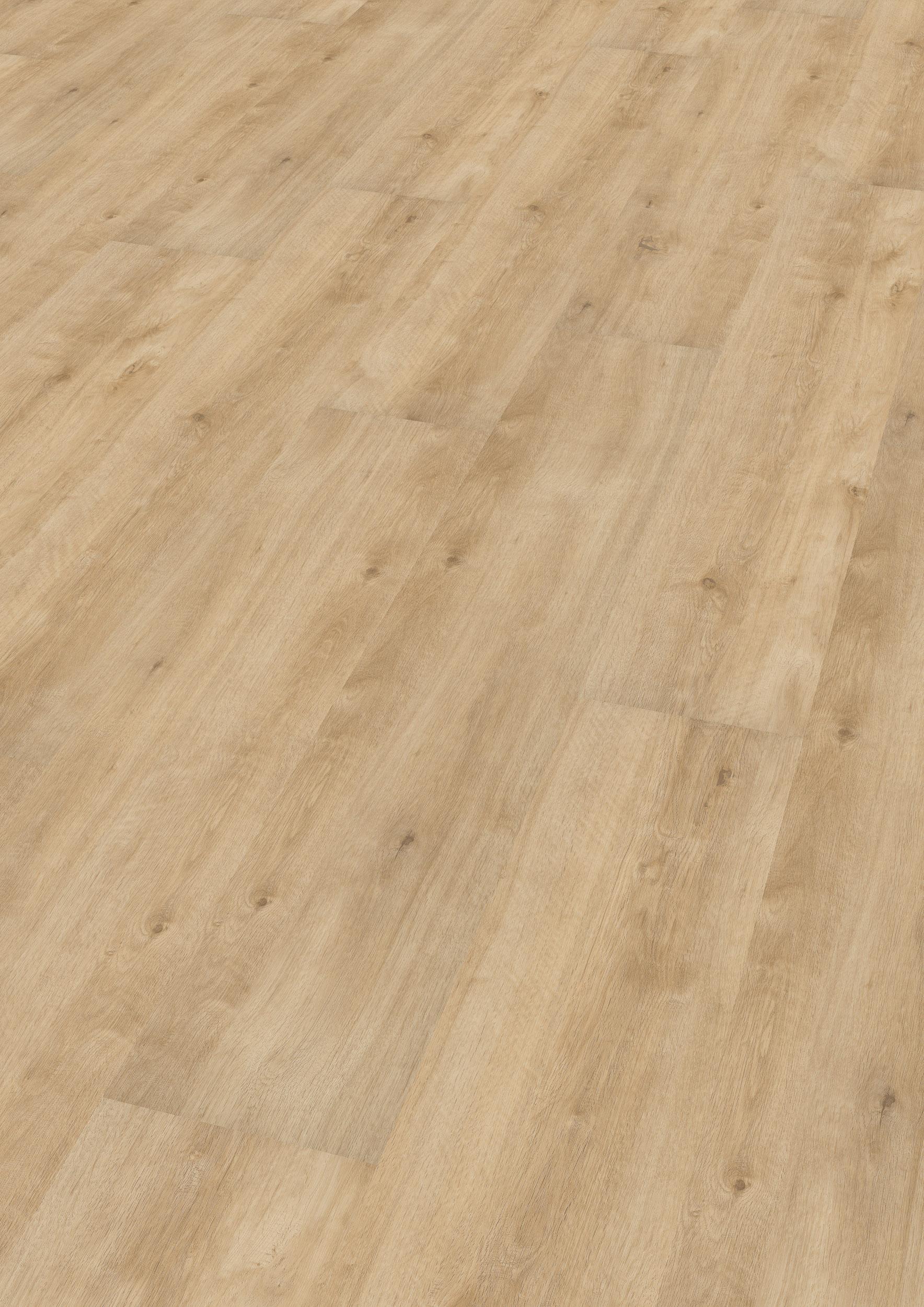 wineo vinyl 2 mm zum kleben woodstock cream wineo 600 wood xl. Black Bedroom Furniture Sets. Home Design Ideas