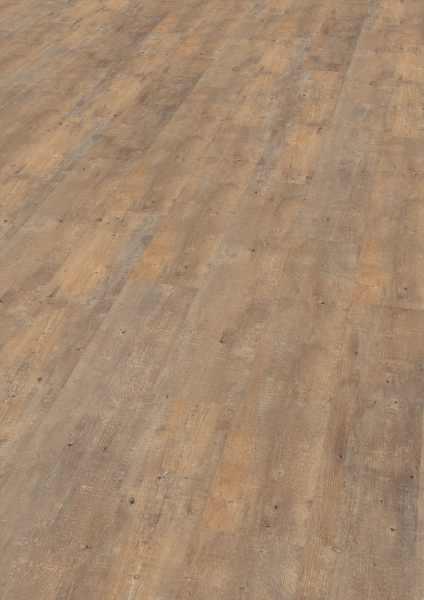 "Wineo Vinyl 2 mm zum kleben ""Boston Pine Cream"" - AMBRA wood"